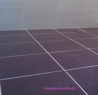 Manaranche d but de printemps for Carrelage salle de bain violet